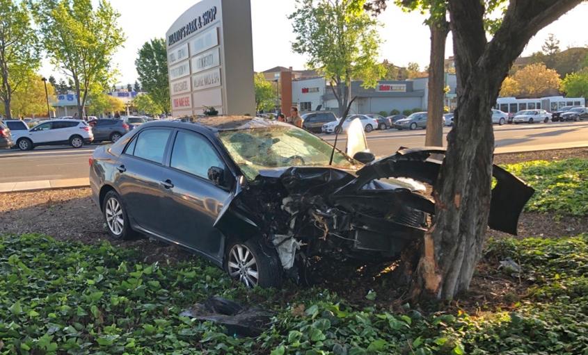 A car crashed onto a tree