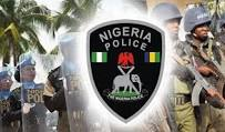 Image of the Nigerian police logo