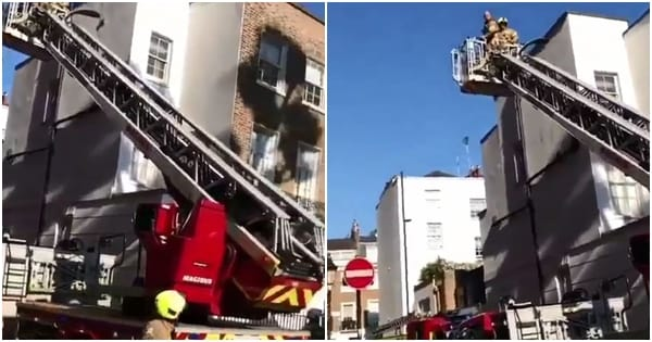 Otedola's London family apartment fire incident.